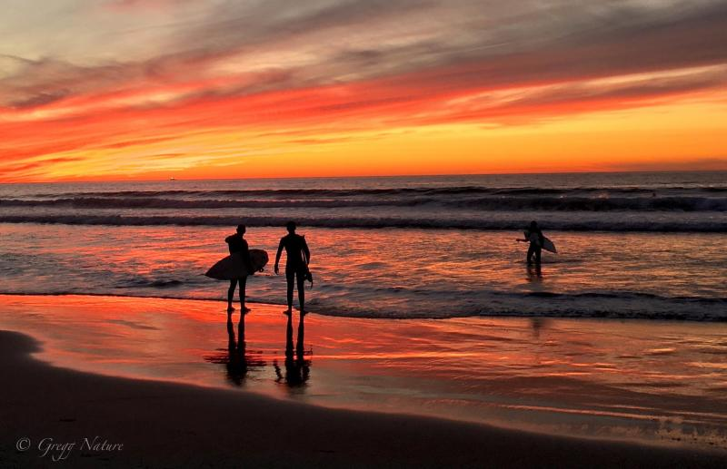 Sunset in San Diego 2015 by Gregg Webber