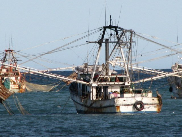 A typical shrimp boat anchored in our lagoon at Campo Uno in San Felipe