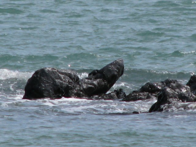 Seal Rock at high tide outside our villa en la playa at Campo Uno