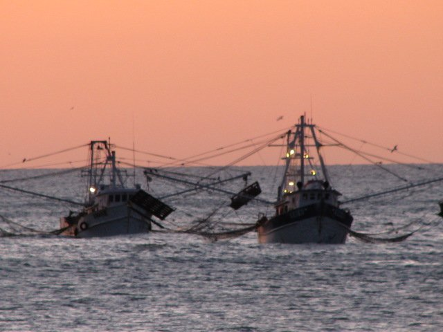 Shrimp boats anchored at Campo Uno...Zoomed in and out.