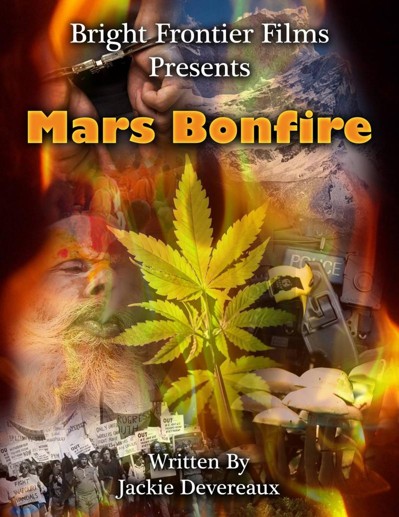 Mars Bonfire, the book, the film and the TV show