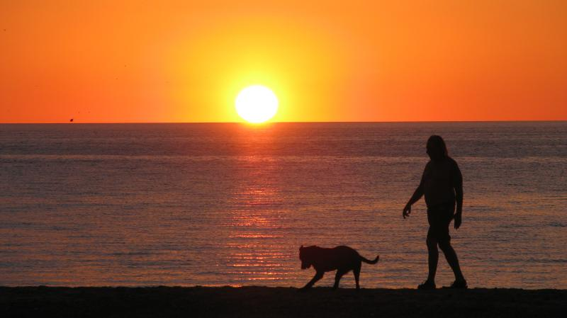 Tom walking our dog Zorro at sunrise in Campo Uno, San Felipe, Mexico